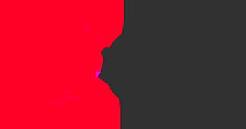 Reflecta REC logo
